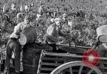 Image of grape harvest France, 1931, second 36 stock footage video 65675031149