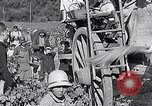 Image of grape harvest France, 1931, second 59 stock footage video 65675031149