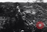 Image of German troops France, 1944, second 18 stock footage video 65675031305