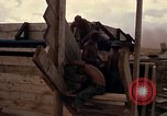 Image of Fire Support Base Vietnam, 1970, second 26 stock footage video 65675031442