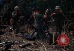 Image of United States Marines Vietnam, 1966, second 11 stock footage video 65675031455
