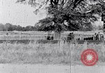 Image of Negro people South Carolina United States USA, 1936, second 49 stock footage video 65675031584