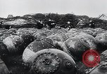 Image of German Navy explosives experts destroy marine mines Germany, 1944, second 2 stock footage video 65675031603