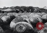 Image of German Navy explosives experts destroy marine mines Germany, 1944, second 3 stock footage video 65675031603