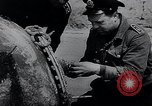 Image of German Navy explosives experts destroy marine mines Germany, 1944, second 22 stock footage video 65675031603