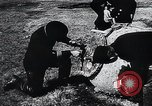 Image of German Navy explosives experts destroy marine mines Germany, 1944, second 36 stock footage video 65675031603