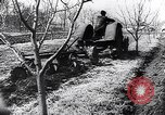 Image of Spanish farmers Spain, 1941, second 48 stock footage video 65675031638