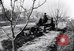 Image of Spanish farmers Spain, 1941, second 50 stock footage video 65675031638