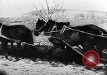 Image of Spanish farmers Spain, 1941, second 52 stock footage video 65675031638