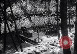 Image of Sailors in training Chicago Illinois USA, 1918, second 55 stock footage video 65675031677