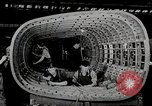 Image of aviation United States USA, 1945, second 40 stock footage video 65675031728