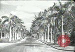 Image of car on a road Miami Florida USA, 1936, second 1 stock footage video 65675031913