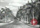 Image of car on a road Miami Florida USA, 1936, second 3 stock footage video 65675031913