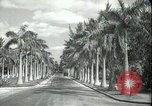 Image of car on a road Miami Florida USA, 1936, second 6 stock footage video 65675031913