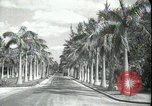 Image of car on a road Miami Florida USA, 1936, second 10 stock footage video 65675031913