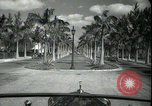 Image of car on a road Miami Florida USA, 1936, second 25 stock footage video 65675031913