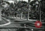 Image of car on a road Miami Florida USA, 1936, second 30 stock footage video 65675031913
