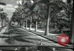 Image of car on a road Miami Florida USA, 1936, second 33 stock footage video 65675031913