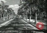 Image of car on a road Miami Florida USA, 1936, second 35 stock footage video 65675031913