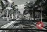 Image of car on a road Miami Florida USA, 1936, second 40 stock footage video 65675031913