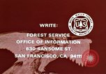 Image of peregrine falcon California United States USA, 1970, second 30 stock footage video 65675031951