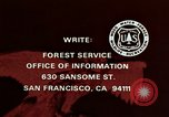 Image of peregrine falcon California United States USA, 1970, second 32 stock footage video 65675031951