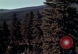 Image of reforest areas California United States USA, 1970, second 2 stock footage video 65675031952