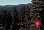 Image of reforest areas California United States USA, 1970, second 3 stock footage video 65675031952