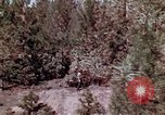 Image of reforest areas California United States USA, 1970, second 33 stock footage video 65675031952