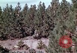 Image of reforest areas California United States USA, 1970, second 34 stock footage video 65675031952