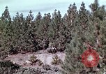 Image of reforest areas California United States USA, 1970, second 35 stock footage video 65675031952