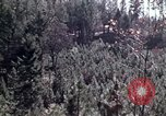 Image of reforest areas California United States USA, 1970, second 53 stock footage video 65675031952
