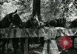 Image of camping party Maryland United States USA, 1921, second 40 stock footage video 65675031991
