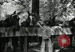Image of camping party Maryland United States USA, 1921, second 45 stock footage video 65675031991