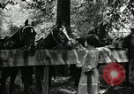 Image of camping party Maryland United States USA, 1921, second 47 stock footage video 65675031991