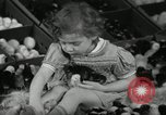 Image of chicken hatched New Brunswick New Jersey USA, 1941, second 23 stock footage video 65675032025