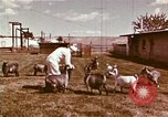 Image of Hanford Project Richland Washington USA, 1966, second 17 stock footage video 65675032081