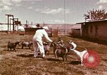 Image of Hanford Project Richland Washington USA, 1966, second 21 stock footage video 65675032081