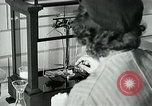 Image of women workers United States USA, 1942, second 28 stock footage video 65675032088