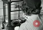 Image of women workers United States USA, 1942, second 29 stock footage video 65675032088