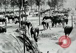 Image of Battle of Arras Picardy France, 1918, second 33 stock footage video 65675032105