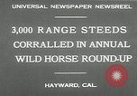 Image of annual wild horse round up Hayward California USA, 1930, second 3 stock footage video 65675032154