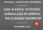 Image of annual wild horse round up Hayward California USA, 1930, second 5 stock footage video 65675032154