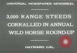 Image of annual wild horse round up Hayward California USA, 1930, second 8 stock footage video 65675032154