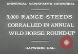 Image of annual wild horse round up Hayward California USA, 1930, second 9 stock footage video 65675032154