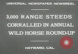 Image of annual wild horse round up Hayward California USA, 1930, second 10 stock footage video 65675032154