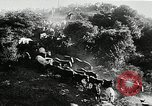Image of annual wild horse round up Hayward California USA, 1930, second 19 stock footage video 65675032154