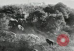 Image of annual wild horse round up Hayward California USA, 1930, second 29 stock footage video 65675032154