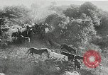 Image of annual wild horse round up Hayward California USA, 1930, second 33 stock footage video 65675032154