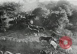 Image of annual wild horse round up Hayward California USA, 1930, second 34 stock footage video 65675032154